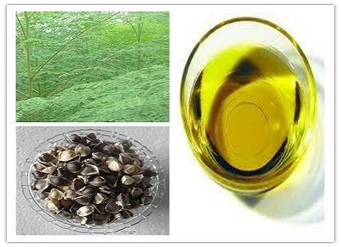 olio di moringa