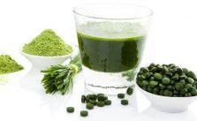 Alga clorella: proprietà, benefici e controindicazioni