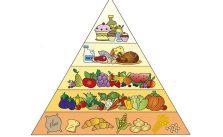 Piramide alimentare: cos'è e come è strutturata