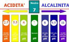 Acqua alcalina: benefici e macchine per farla in casa