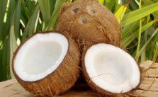 Il cocco fa ingrassare? Calorie e proprietà