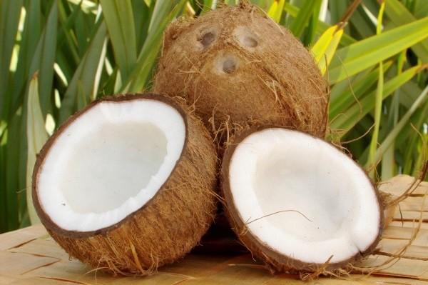 calorie cocco