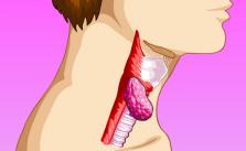 Bolo isterico cause, sintomi e rimedi