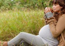 tisane in gravidanza