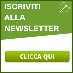 moringa newsletter